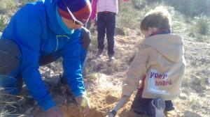 reforestando Agost jardineros en Alicante